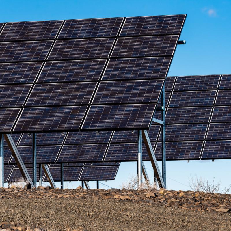 Solar panels in field for renewable energy